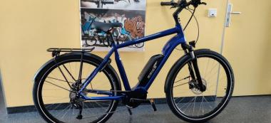 Ebike Trekking Advanced Diamant