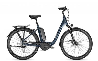Raleigh KINGSTON 9 XXL deepskyblue glossy