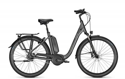Raleigh KINGSTON 8 XXL granitegrey matt