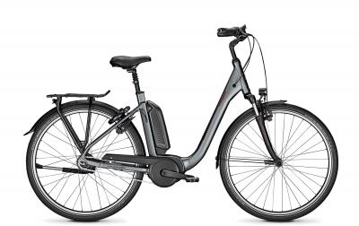 Raleigh KINGSTON 8 shadowgrey matt