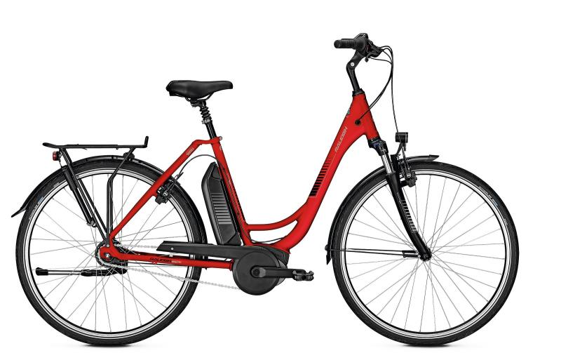 Raleigh JERSEY PLUS barolored matt 2019 - 28 Wave Rücktritt  400 Wh -  52